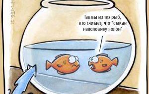 Стихи про аквариум