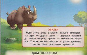 Стихи про носорога для детей