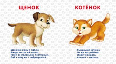 Ирина Гурина. Стихи про домашних животных для детей