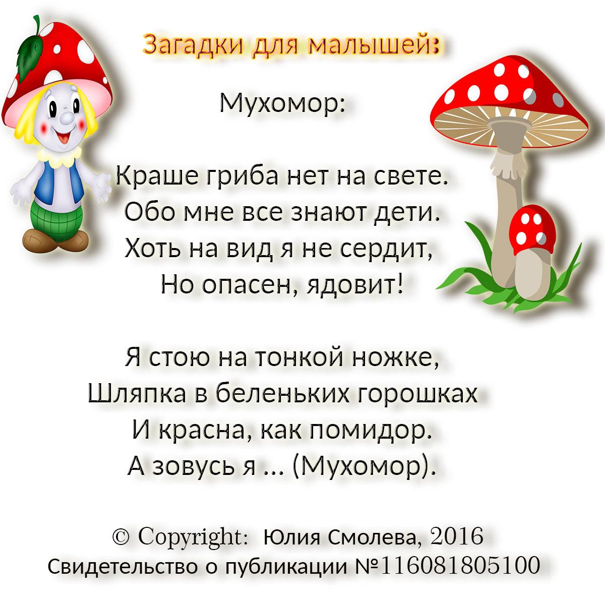 Загадки про грибы для детей с ответами