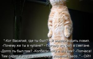Стихи про Васю, Василия