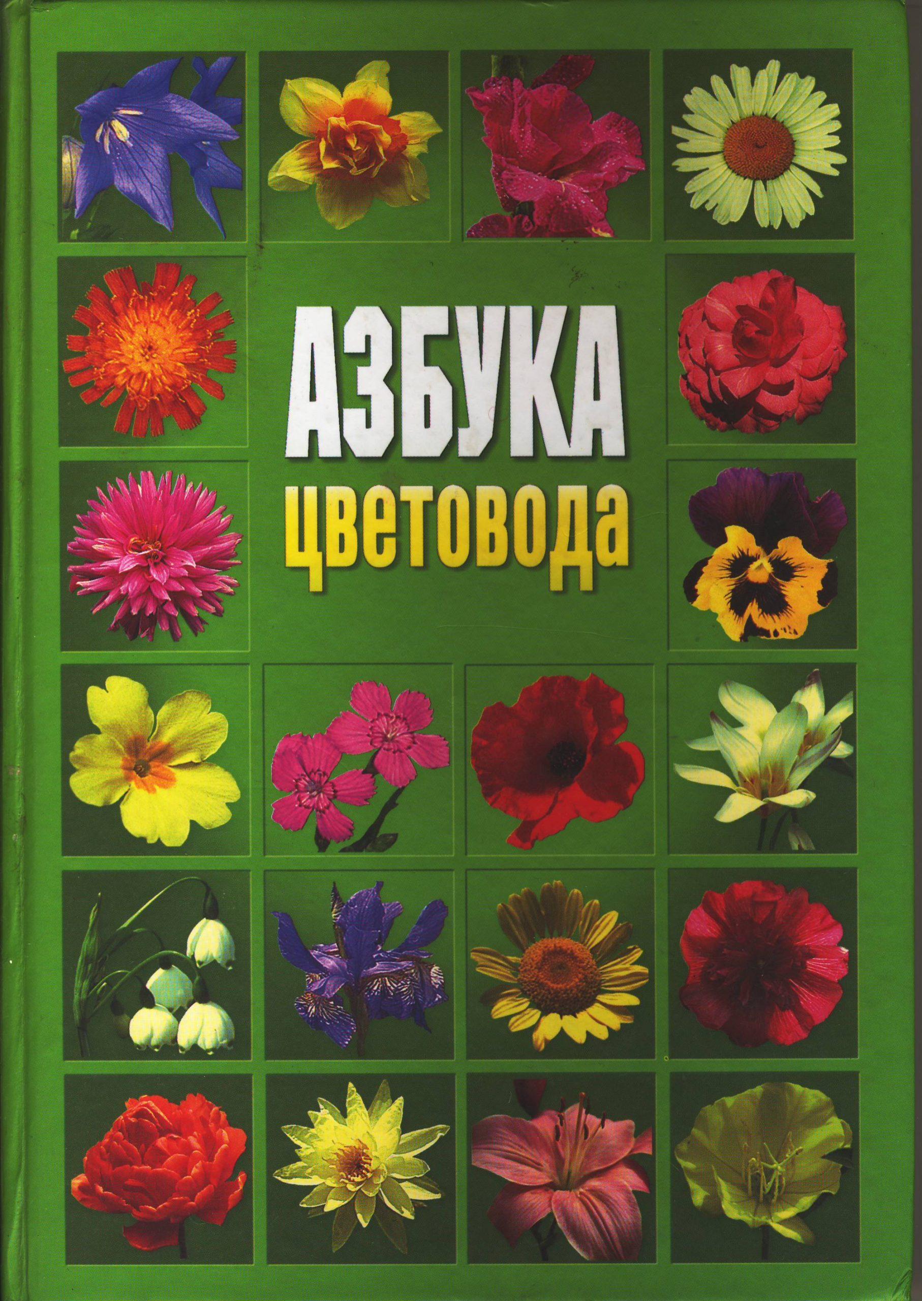 Цветочная азбука в стихах