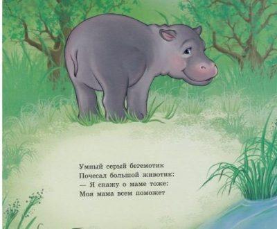 Стихи про бегемота для детей