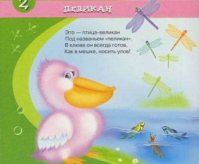 Короткие стихи про птиц