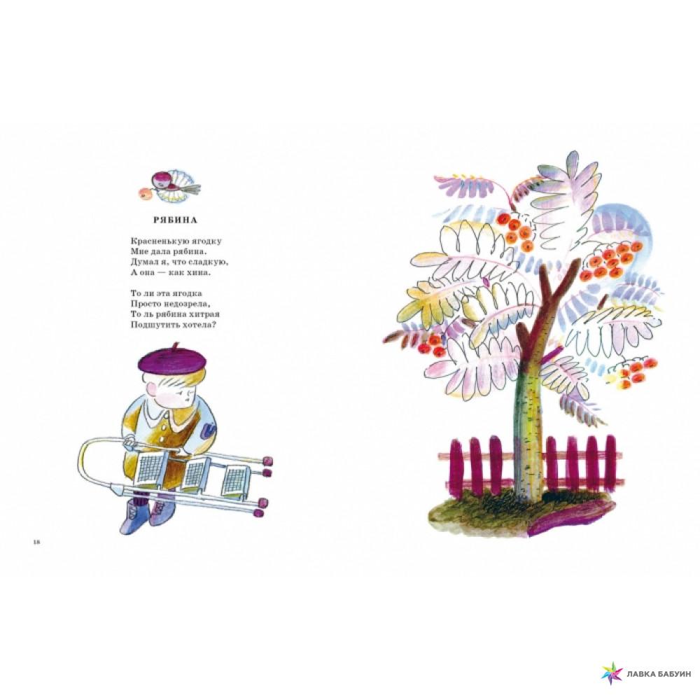 Вера Аношина. Загадки о деревьях для детей