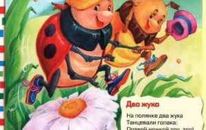 Стихи про жуков