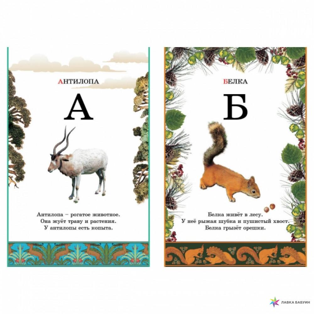 Названия животных по алфавиту