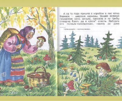 Урок про грибы. Короткие стихи про грибы от сестер Рудик.