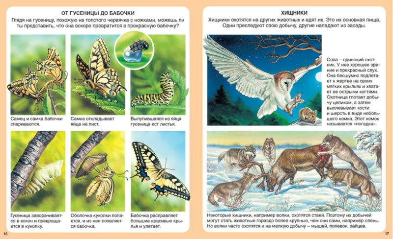 Загадки про природу для детей