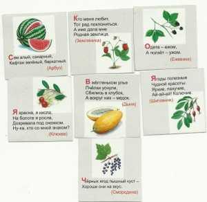 Детские стихи про арбуз