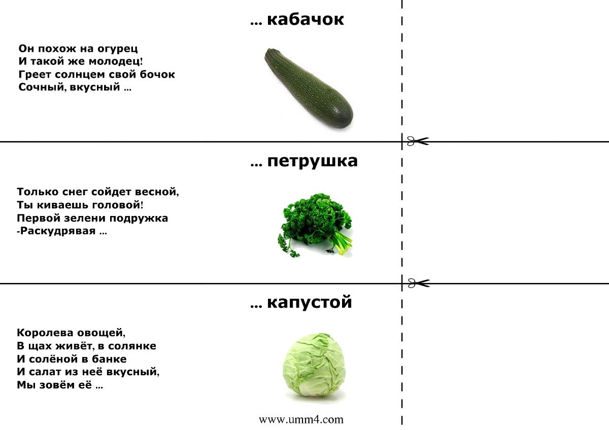 Загадки про овощи для детей
