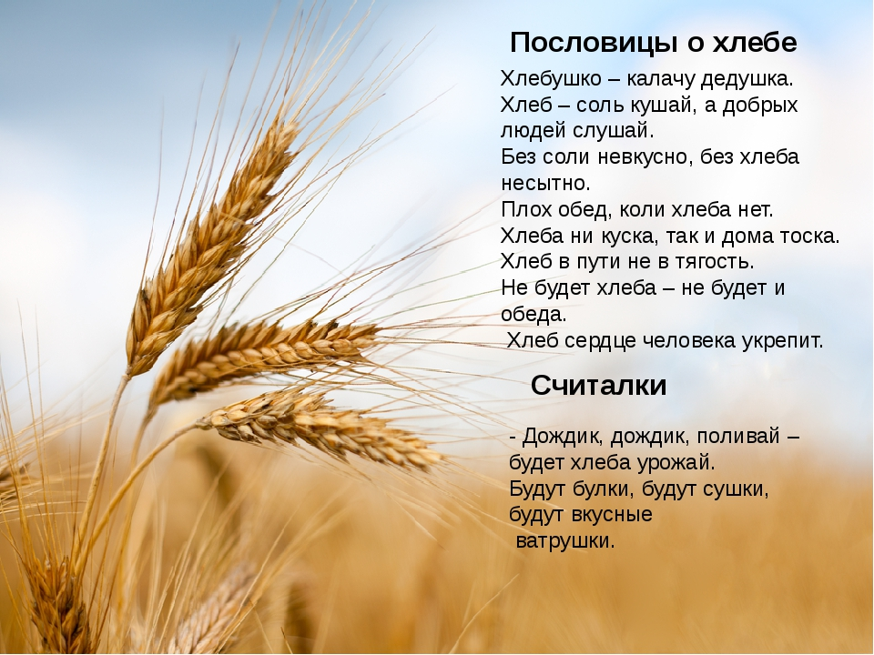 Пословицы и поговорки о хлебе