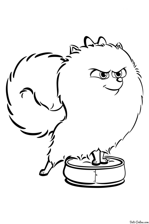 Раскраска Тайная жизнь домашних животных 2