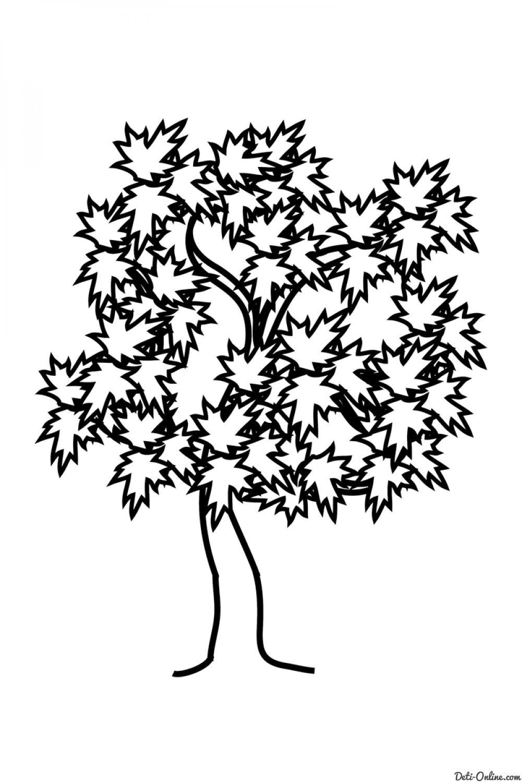 Раскраска Деревья и листья