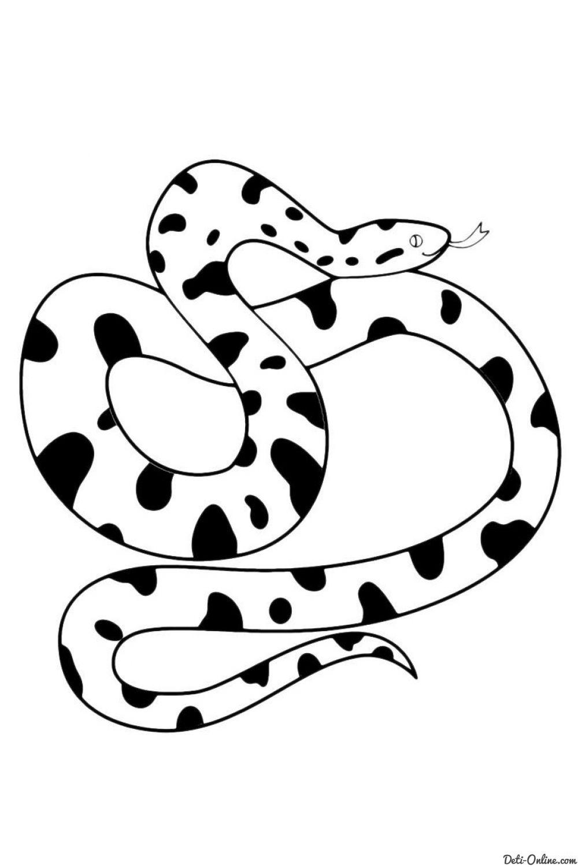 Раскраска Змеи